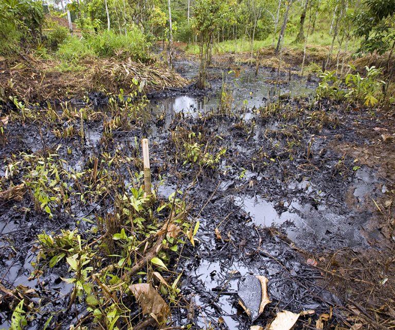 Le principali banche europee giurano di bloccare i finanziamenti al commercio di petrolio dell'Amazzonia